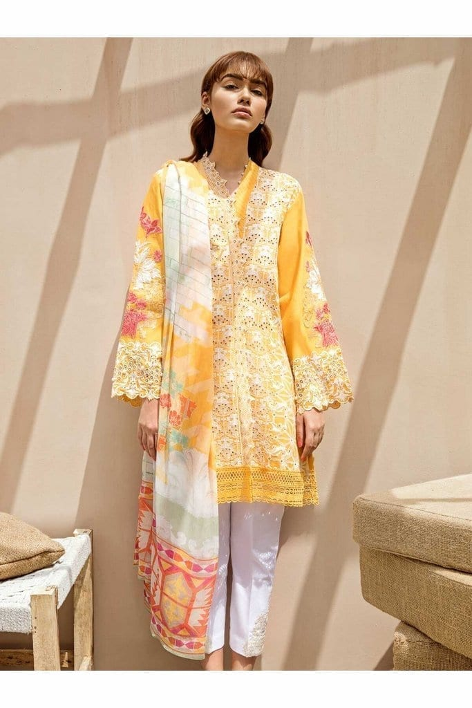 BEECHTREE | LAWN Collection | SUMMER BLONDE